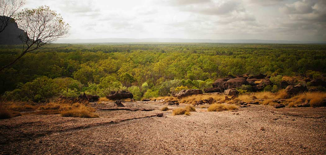 top-danger-outback-australie1